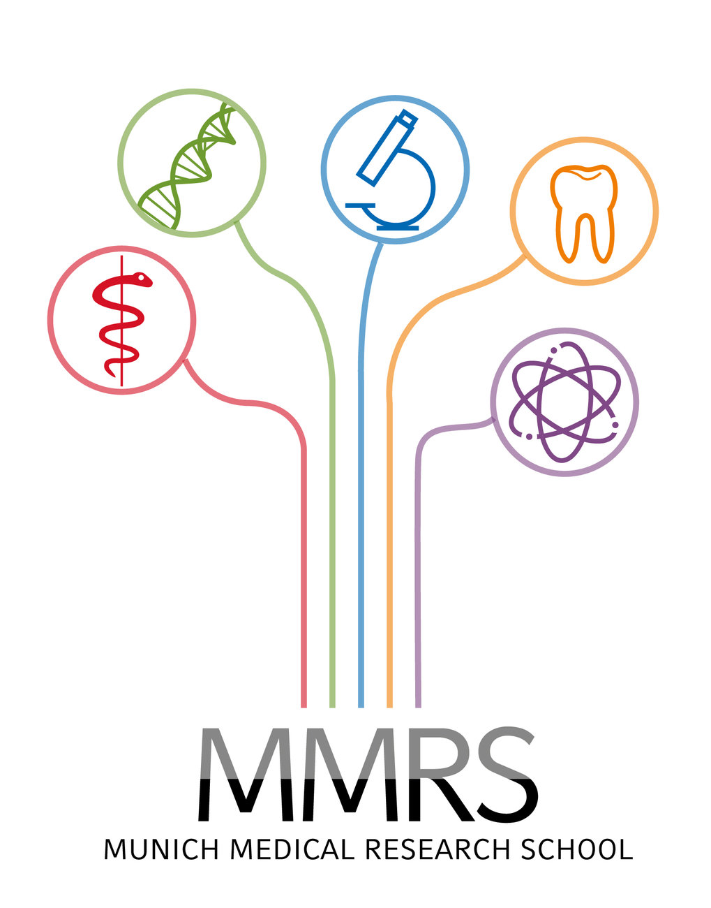 The Munich Medical Research School (MMRS)
